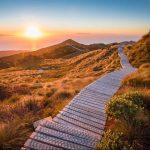 Hump Ridge Track